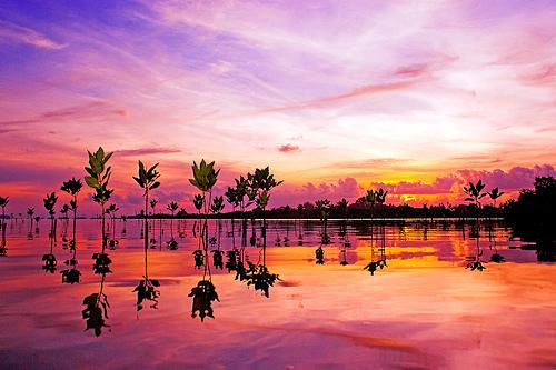 sunrise-at-serangan-island