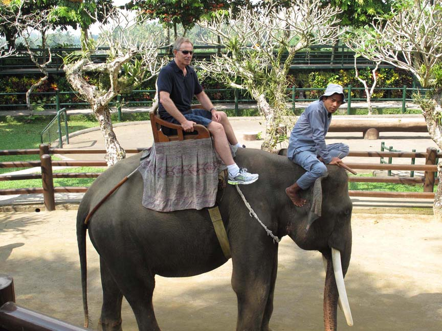 Tony Blair at the Elephant Safari Park